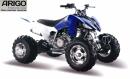 Квадроцикл PANTERA 250 аля YAMAHA